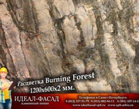Slatelite_BurningForest_1
