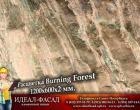 Slatelite_BurningForest_2