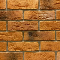 <center>Dover brick 31-1<br />1250 р. м.кв.</center>